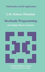 Stochastic Programming (Mathematics and its Applications, nr. 13)