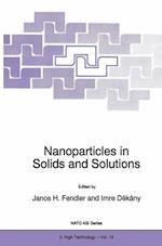 Nanoparticles in Solids and Solutions (NATO Science Partnership Sub-Series, 3, nr. 18)