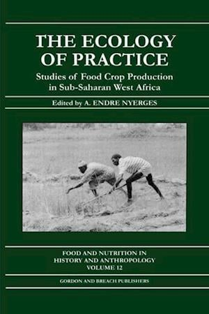 Ecology of Practice