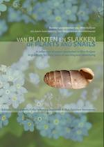 Of Plants and Snails