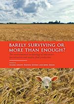 Barely Surviving or More than Enough?
