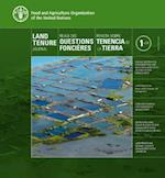 Land Tenure Journal 01/14