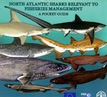North Atlantic Sharks Relevant to Fisheries Management