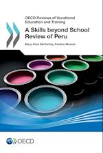 A Skills Beyond School Review of Peru (OECD Reviews of Vocational Education and Training)