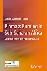 Chemical Issues in Biomass Burning in Sub-Saharan Africa
