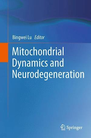 Mitochondrial Dynamics and Neurodegeneration
