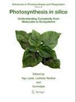Photosynthesis in silico (ADVANCES IN PHOTOSYNTHESIS AND RESPIRATION, nr. 29)