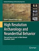 High Resolution Archaeology and Neanderthal Behavior (Vertebrate Paleobiology And Paleoanthropology)