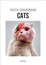 Insta Grammar: Cats (Insta Grammar, nr. 3)