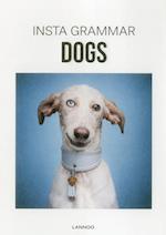 Insta Grammar Dogs