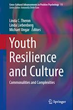 Youth Resilience and Culture (Cross-cultural Advancements in Positive Psychology)