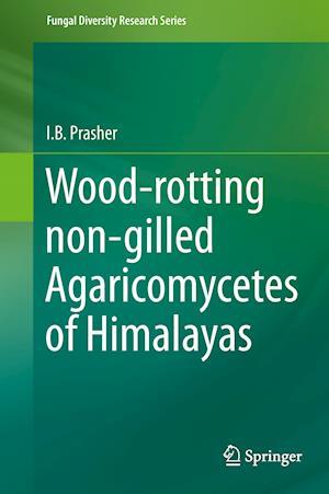 Wood-rotting non-gilled Agaricomycetes of Himalayas
