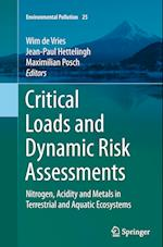 Critical Loads and Dynamic Risk Assessments (Environmental Pollution, nr. 25)