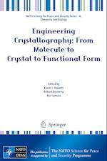 Engineering Crystallography: From Molecule to Crystal to Functional Form (NATO Science for Peace and Security Series - A: Chemistry And Biology)