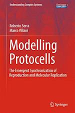 Modelling Protocells : The Emergent Synchronization of Reproduction and Molecular Replication