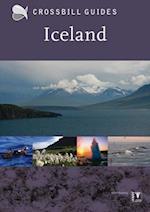 Iceland af Andy Jones