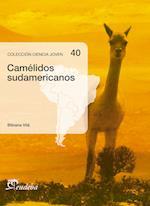 Camélidos sudamericanos