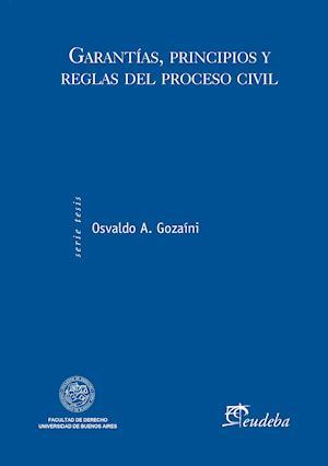 Garantías, principios y reglas del proceso civil