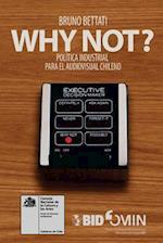 Why Not? Politica Industrial Para El Audiovisual Chileno