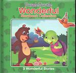 Wonderful Story Book Collection 3 Stories