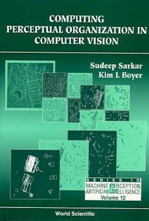 Computer Perceptual Organization In Computer Vision