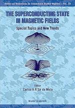 Superconducting State in Magnetic Fields, The (DIRECTIONS IN CONDENSED MATTER PHYSICS, nr. 13)