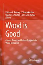 Wood is Good : Current Trends and Future Prospects in Wood Utilization