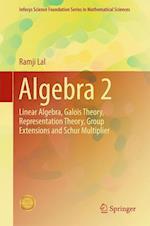 Algebra 2 (Infosys Science Foundation Series)