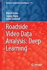 Roadside Video Data Analysis : Deep Learning