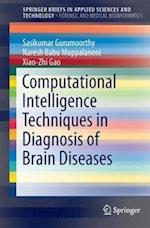 Computational Intelligence Techniques in Diagnosis of Brain Diseases
