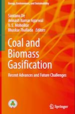 Coal and Biomass Gasification (Energy Environment and Sustainability)