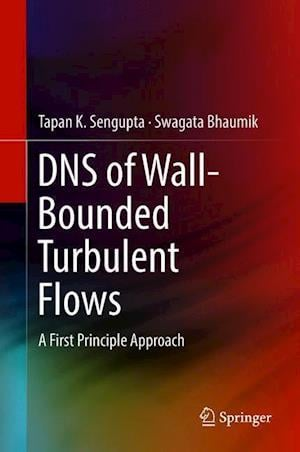 DNS of Wall-Bounded Turbulent Flows : A First Principle Approach