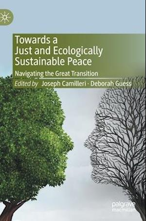 Towards a Just and Ecologically Sustainable Peace