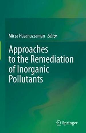 Approaches to the Remediation of Inorganic Pollutants