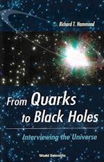 FROM QUARKS TO BLACK HOLES - INTERVIEWING THE UNIVERSE