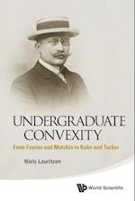 Undergraduate Convexity: From Fourier And Motzkin To Kuhn And Tucker