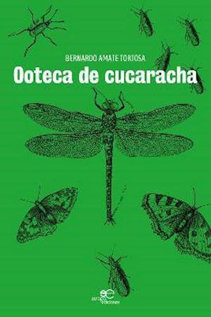 OOTECA DE CUCARACHA