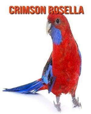 Crimson Rosella: Amazing Facts & Pictures