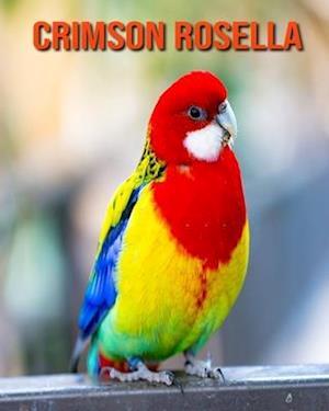Crimson Rosella: Amazing Photos & Fun Facts Book About Crimson Rosella For Kids