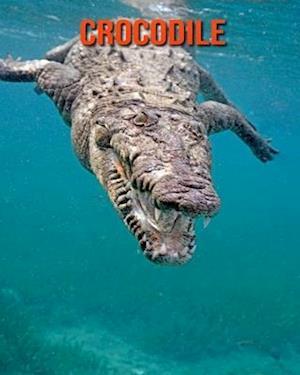 Crocodile: Amazing Photos & Fun Facts Book About Crocodile For Kids