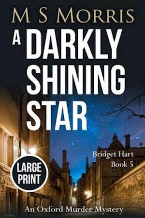 A Darkly Shining Star (Large Print Edition)