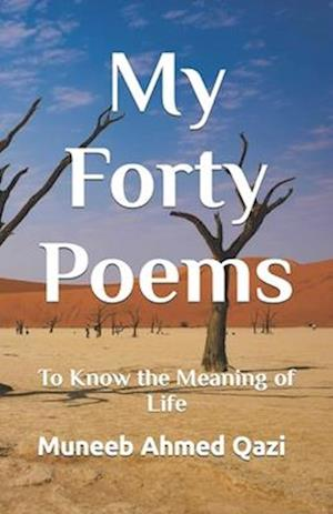 My Forty Poems