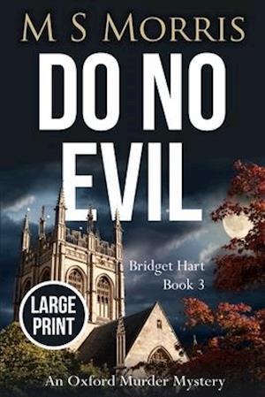 Do No Evil (Large Print Edition)