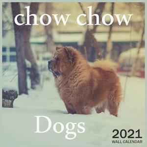Dogs chow chow