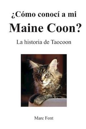 ¿Cómo conocí a mi Maine Coon?