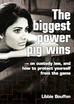 The biggest power pig wins - on custody law, and how to protect yourself from the game