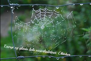 Energi og glæde hele vinterhalvåret : Oktober