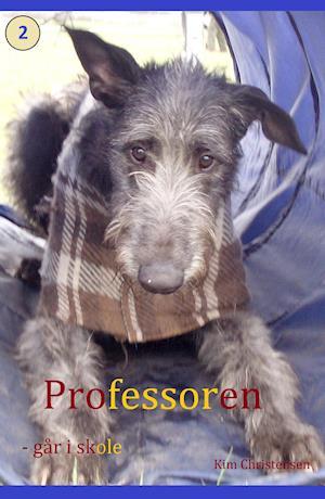 Professoren - går i skole