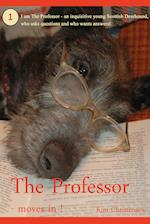 The Professor - moves in