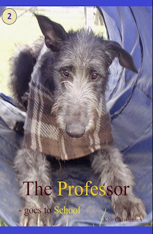 The Professor - goes to school